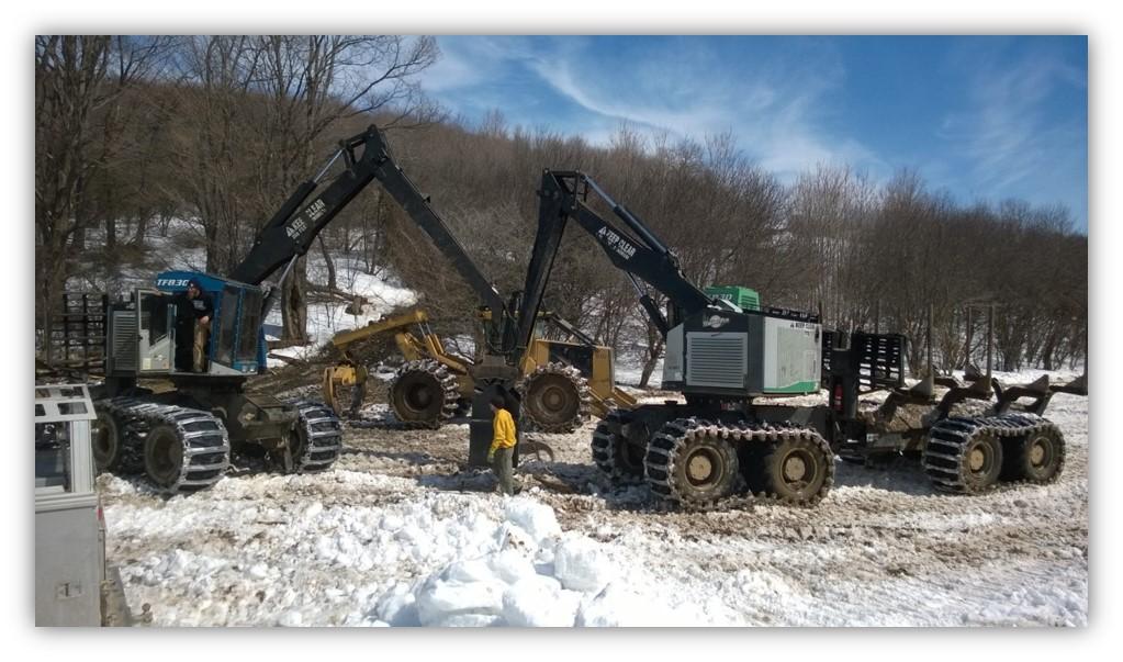 Logging & Land Clearing | TREEMASTERS | Groton, NY | Logging